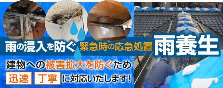 雨の浸入を防ぐ緊急時の応急処置雨養生