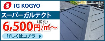 IGスーパーガルテクト6500円/㎡~