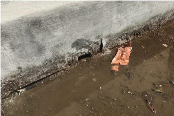 陸屋根ドレン周りに溜まった水と泥