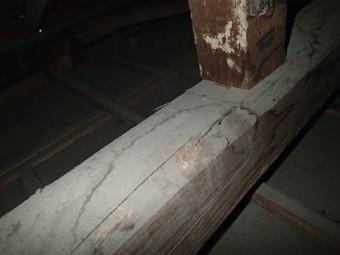 点検時の様子 雨漏り跡とカビ