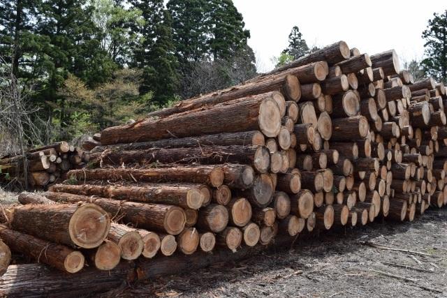 木材・丸太